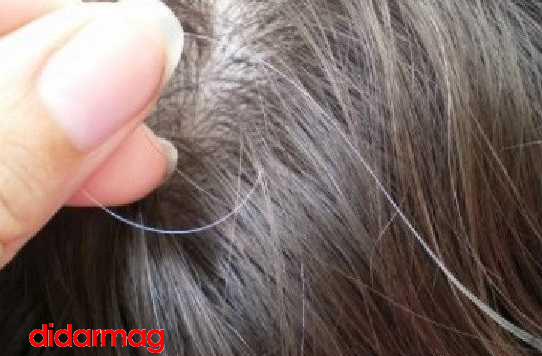 حقایقی جالب در مورد موهای سفید